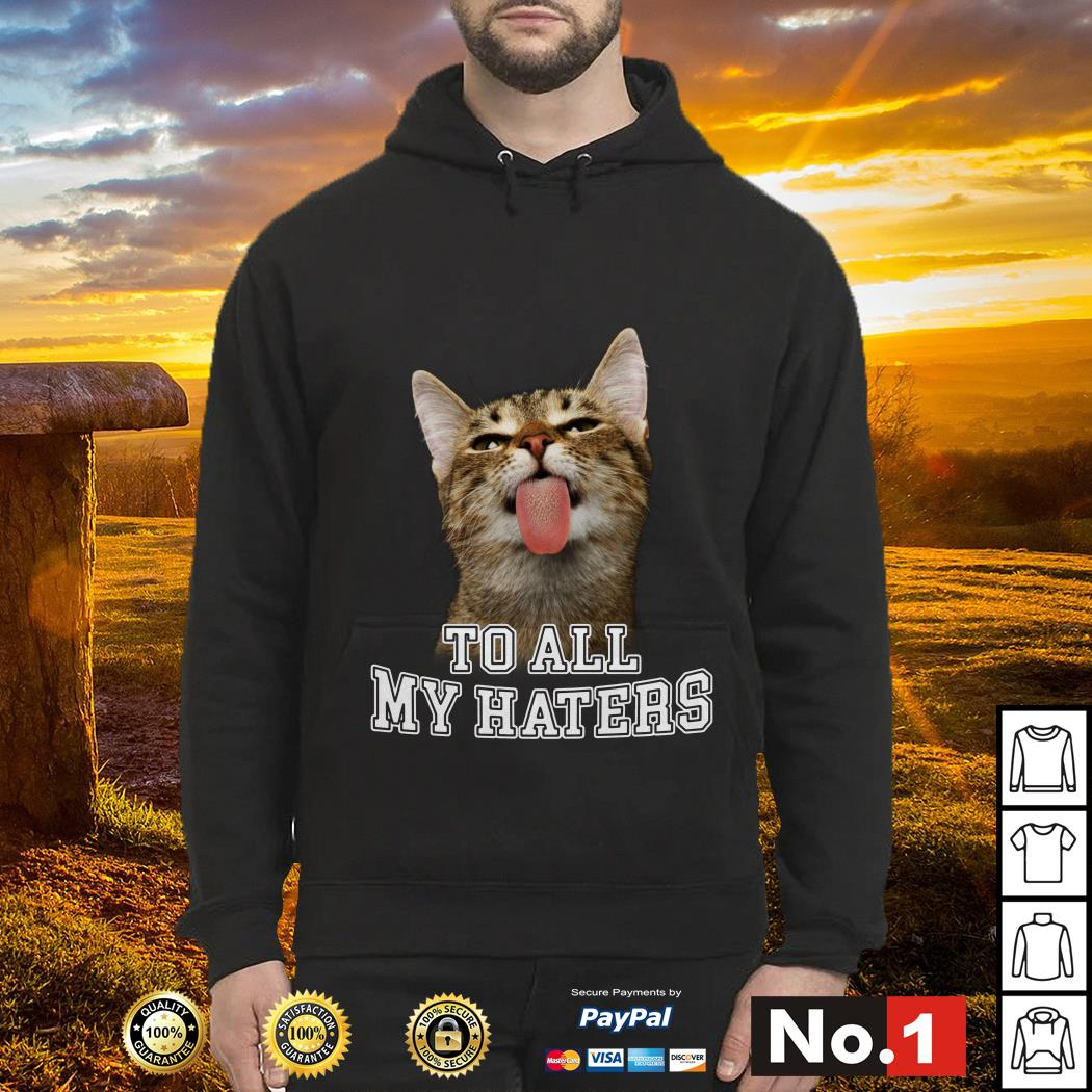 Cat to all my haters hoodie