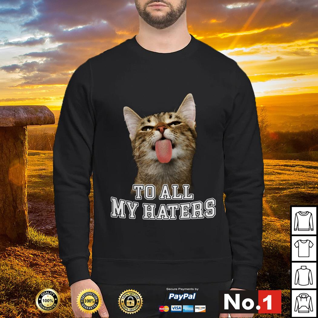 Cat to all my haters sweater